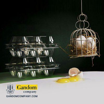 شانه 6 عددی تخم مرغ دوزرده